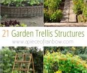 garden trellis design