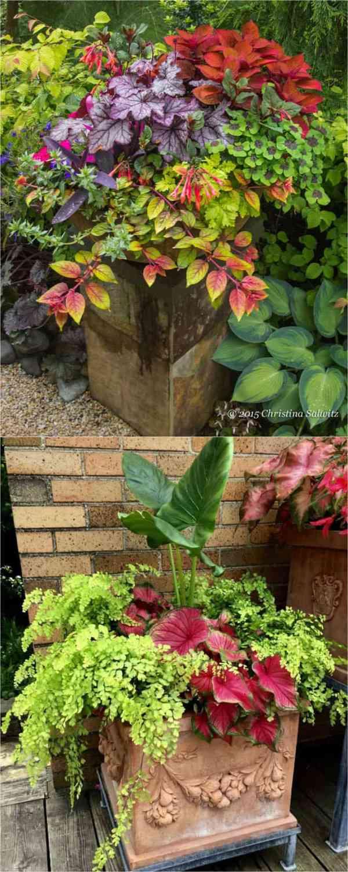 colorful shade garden pots