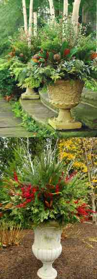 24 Colorful Winter Planters & Christmas Outdoor ...