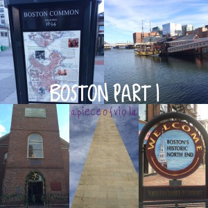 Travel | Boston 2014-15 Part 1