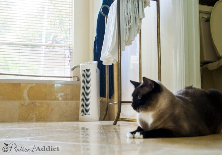 Febreze air purifier - keeps the bathroom smelling fresh and clean