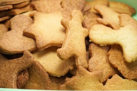 cookie-1769879_1920