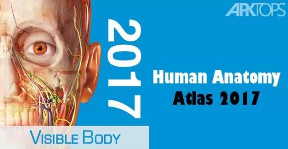 Human Anatomy Atlas 2017 V2017139 Apk Data Download Full
