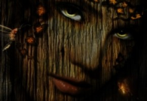 nokia-n900-800x480-wallpaper-1469