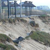 Érosion du littoral Atlantique : l'activité humaine est la principale responsable