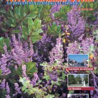 VLO N° 73 publié en octobre 2004