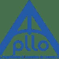 Règlement Local de Publicité – zone urbanisée Pitrot-RD6