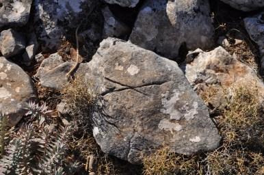 Χαραγμένη πέτρα