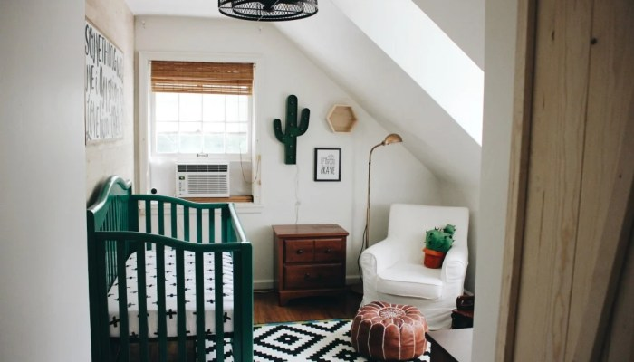 Finn's Cactus Nursery Reveal!