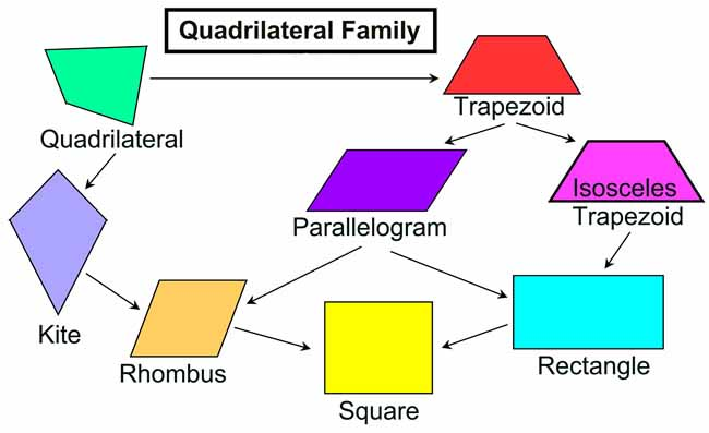 How many types of quadrilaterals are there a plus topper how many types of quadrilaterals are there ccuart Image collections