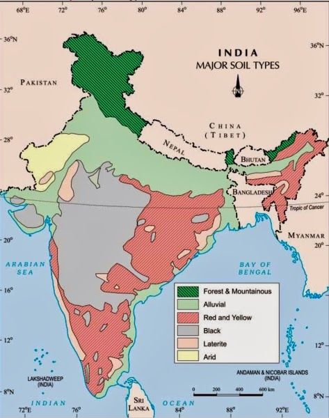 ICSE Solutions For Class 10 Geography Soils In India A