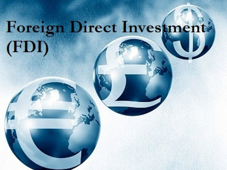 Essay On Foreign Direct Investment