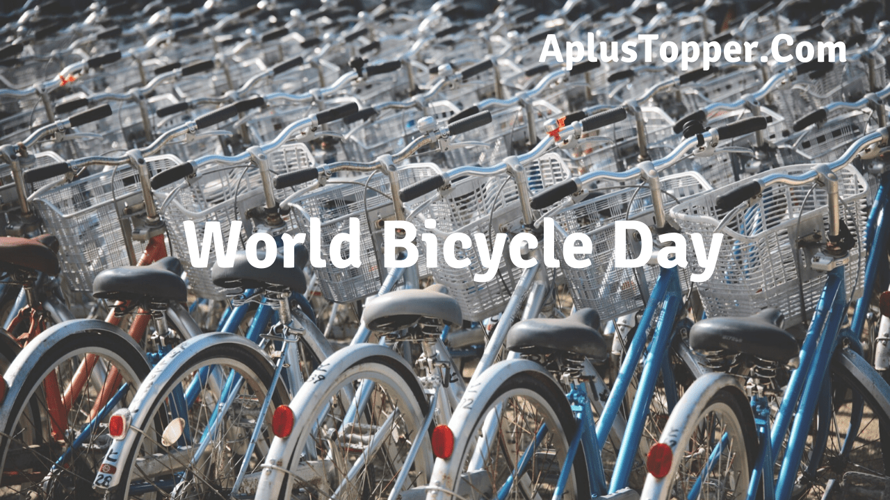 World Bicycle Day Theme