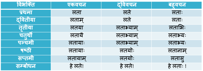 Lata Shabd Roop In Sanskrit