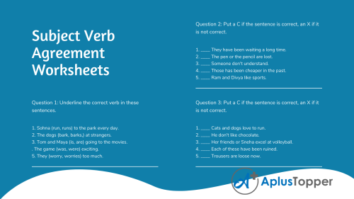 small resolution of Subject Verb Agreement Exercises for Class 9 ICSE With Answers - A Plus  Topper