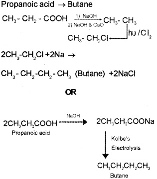Plus Two Chemistry Chapter Wise Previous Questions Chapter 12 Aldehydes, Ketones and Carboxylic Acids 31