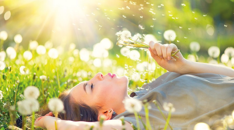 Frau liegt auf Wiese im Pusteblumenfeld. Pollen. Fragen und Antworten