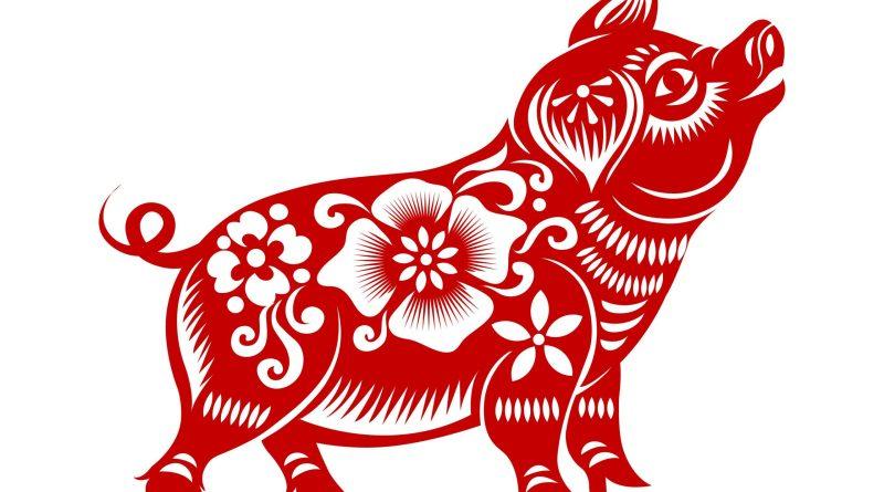 rotes Schwein auf weißem Hintergrund. Chinesisches Horoskop Schwein. Illustration eines chinesisches Horoskops für Schwein.