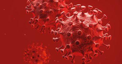 Wie viele Coronaviren  machen krank?