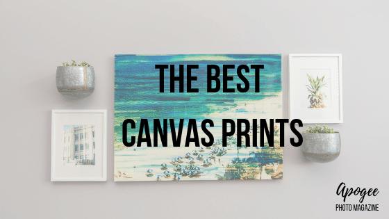 best canvas prints apogee