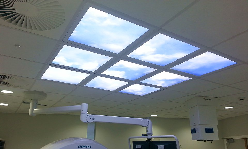 Apollo Lighting Ltd Lighting Control Solutions Touch And Dim