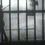 Deţinuţii de la Periprava, TORTURAŢI pentru că mâncau şerpi vii sau porumb crud