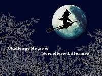 challenge magie et sorcellerie