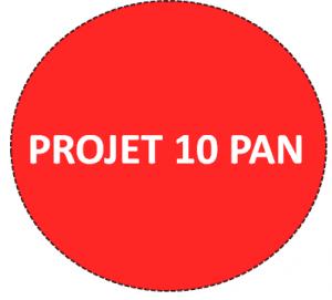 projet-10-pan