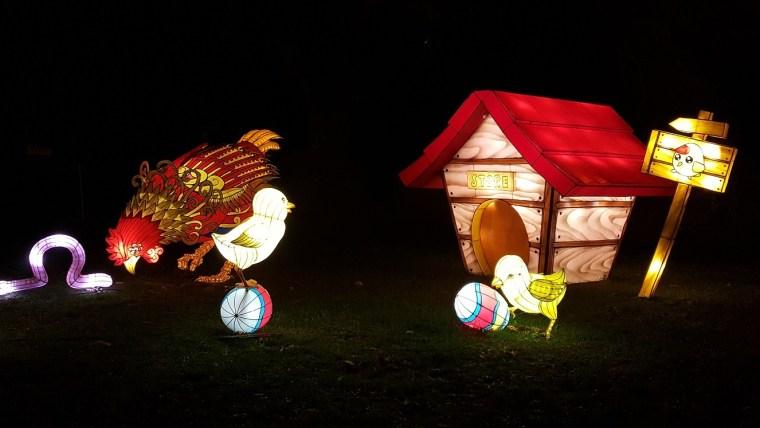 festival des lanternes gaillac insectes