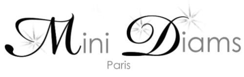 mini-diams-paris.png