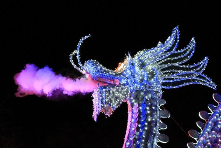 festival des lanternes gaillac dragon fumée