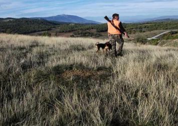 Τα νέα τέλη για την άδεια κυνηγιού 2016 – 2017