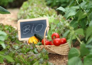 ΟΠΕΚΕΠΕ: Ανακοίνωση για τα παραστατικά συμμόρφωσης για την βιολογική