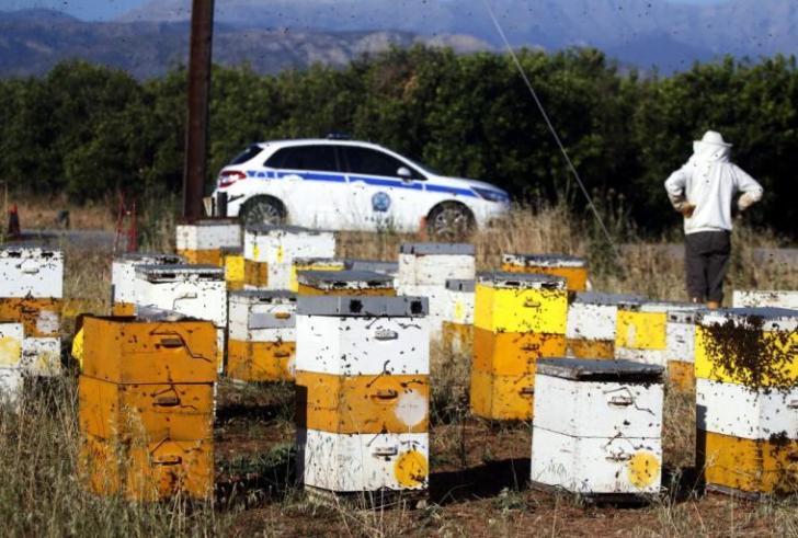 «Σώστε τις μέλισσες και τους αγρότες»