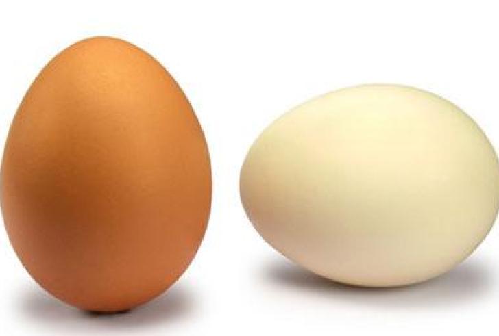 Τι παθαίνει ένα αβγό στο ξίδι; (βίντεο)