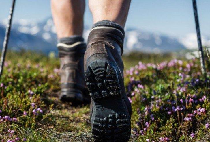 Μεγάλη εκδρομή από τον Ορειβατικός Σύλλογος Χανίων