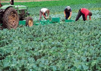 70 εκατ. ευρώ για 5.000 μικροκαλλιεργητές σε ολόκληρη τη χώρα