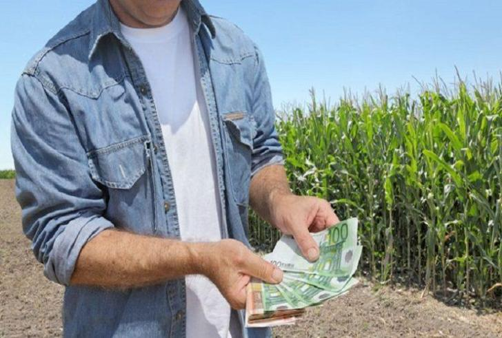 Τι είναι το Ταμείο Εγγυήσεων Αγροτικής Ανάπτυξης