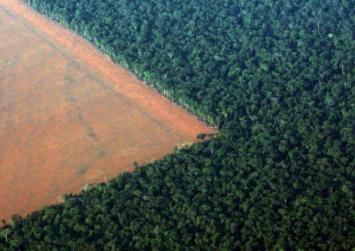 Αμαζόνιος: Σε ένα χρόνο εξαφανίστηκε δάσος 5 φορές όσο το Λονδίνο