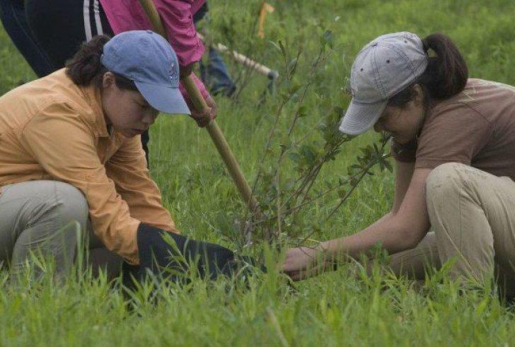 Φιλιππίνες: Αν δεν φυτέψεις 10 δέντρα… δεν παίρνεις απολυτήριο!