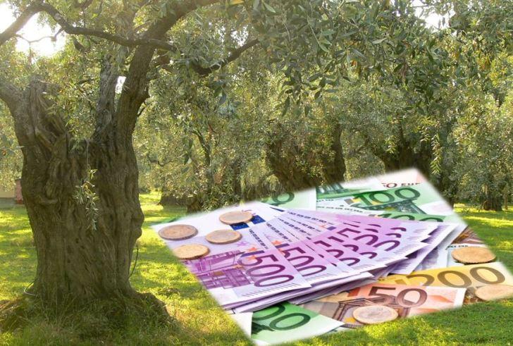Πληρωμή Βασικής Ενίσχυσης: Θα… «παρελάσει» χρήμα!