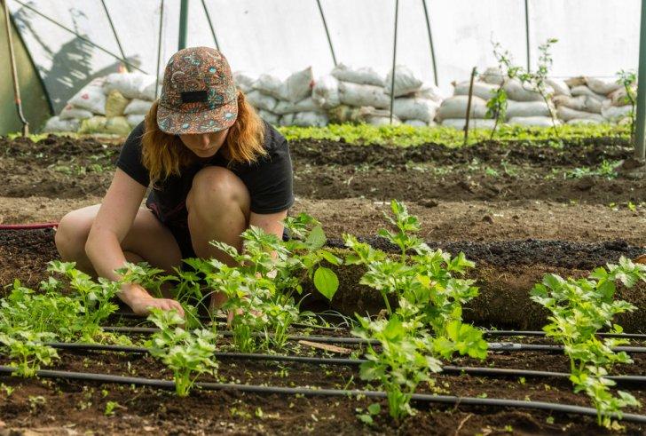 Ανησυχίες αγροτών για αύξηση εισφορών ΕΛΓΑ από τις αλλαγές