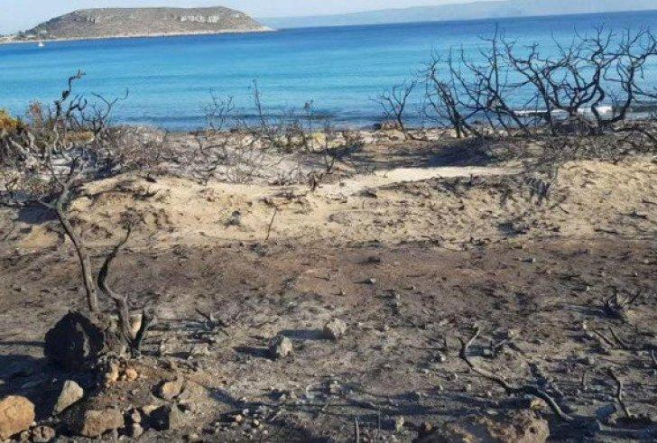 Κρανίου τόπος η Ελαφόνησος: Η φωτιά έκανε στάχτη το 25% του νησιού