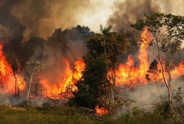 Στην G7 η κατάσταση στην Αμαζονία