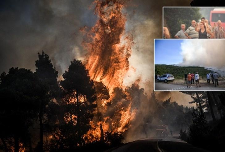 Φωτιά στην Εύβοια: Μάχη με τις φλόγες σε 4 μέτωπα από τις πρώτες πρωινές ώρες