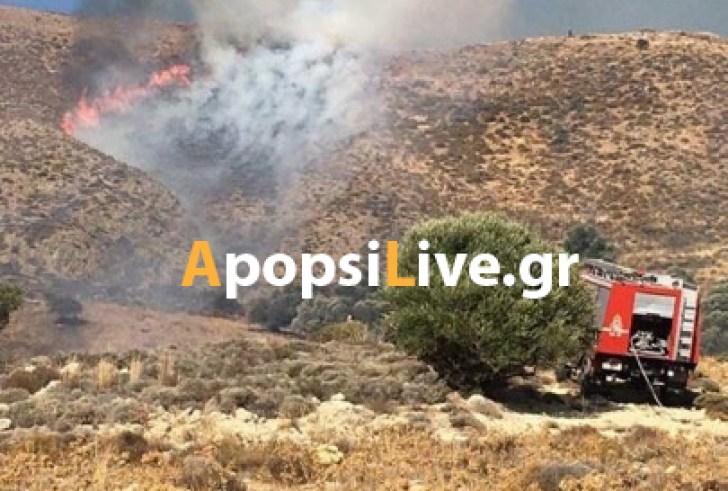 Συναγερμός στην Πυροσβεστική από πυρκαγιά έξω από τους Αγίους Δέκα (φώτο- βίντεο)