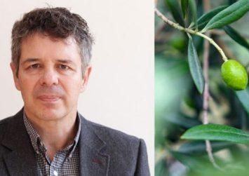 Τι προτείνει για την καταπολέμηση του δάκου ο ερευνητής εντομολογίας του ΙΤΕ