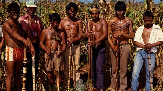 Shell renuncia a sus planes de producir caña de azúcar en las tierras habitadas por los guaraníes