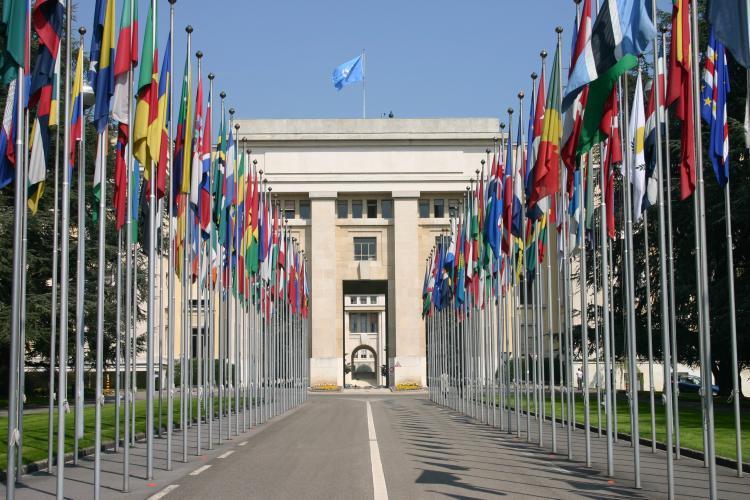 Consejo de Derechos Humano de la ONU