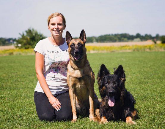 szkolenie psow wroclaw